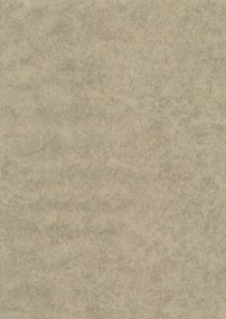 ET4073 Stone Stone Allover Wallpaper