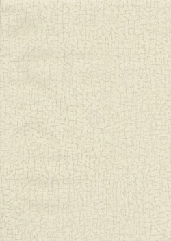 ET4090 Neutral Cork Texture Wallpaper