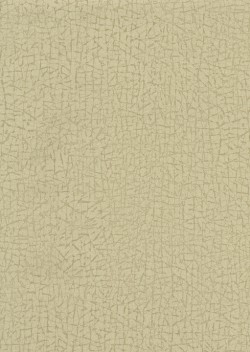 ET4091 Khaki Cork Texture Wallpaper