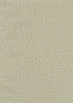 ET4092 Grey Cork Texture Wallpaper