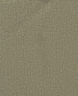 ET4094 Gold Cork Texture Wallpaper