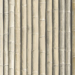G67940 Bamboo Wallpaper