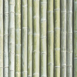 G67941 Bamboo Wallpaper