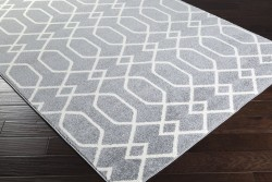 HRZ1045-23 Surya Rug | Horizon Collection