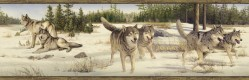 Shiloh Beige Wintry Wolf Portrait Wallpaper Border