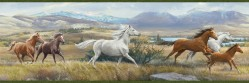 Swift Yellow Open Range Horses Portrait Wallpaper Border