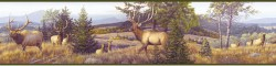 Breeze Green Elk Mountain Portrait Wallpaper Border