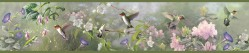 Ruby Moss Hummingbird Garden Wallpaper Border