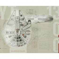 Murals Star Wars Millennium Falcon Pre-Pasted Mural