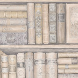 LL29569 Bookcase Wallpaper