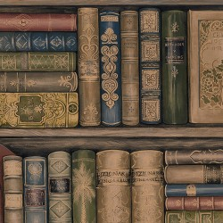 LL29570 Bookcase Wallpaper