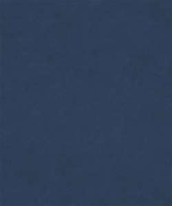 M9989 Navy Barrow Fabric