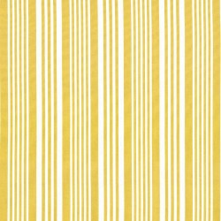 Mahina Stripe Maize Kasmir Fabric
