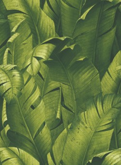 NW31000 Tropical Banana Leaves NextWall Peel & Stick Wallpaper