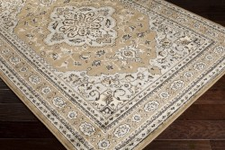 PAR1056-23 Surya Rug | Paramount Collection