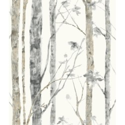RMK9047WP Birch Trees Peel and Stick Wallpaper