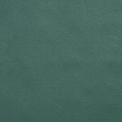 TD-Forest Forest Charlotte Fabrics
