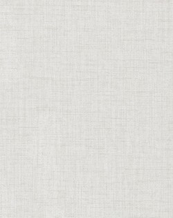 TD1013N White/Off Whites Well Suited Wallpaper