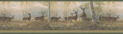 Storrie Green Deer Wallpaper Border