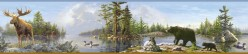 Carnegie Sky Moose Lake Wallpaper Border