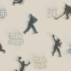 Glavine Grey Sports Figures Toss Wallpaper