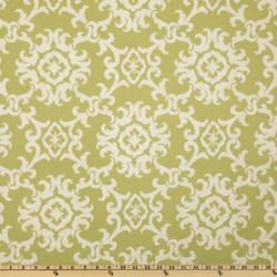 Arvin Grass Swavelle Mill Creek Fabric