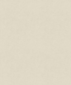 Counterpoint 11001 Ivory Barrow Fabric