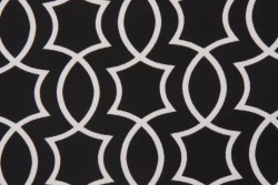 Titan Onyx Richloom Fabric
