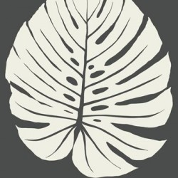 VA1236 Bali Leaf Black Wallpaper