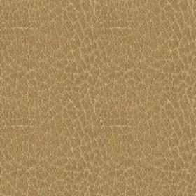 Brisa Distressed 3134 Buckskin Fabric