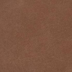 Seabreeze 860 Ginseng Brown Fabric