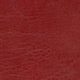 Seabreeze 863 Reel Red Fabric