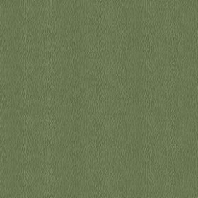 Neochrome 75 Harbor Green Fabric