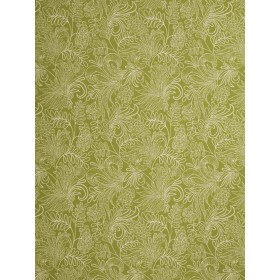 Magnificent Jest Lime Fabric