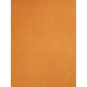 Vivid Outdoor Velvet Orange Fabric