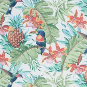 Parrot Clay Hope RM Coco Fabric
