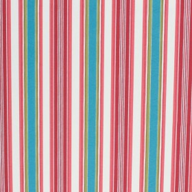 Le Cirque Stripe Pretty in Pink RM Coco Fabric