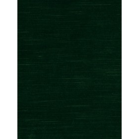 Fabulous Soft Velvet | Evergreen by Robert Allen