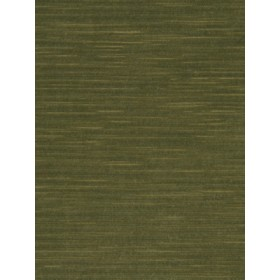 Vivid Soft Velvet | Boxwood by Robert Allen