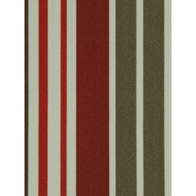 Gorgeous Vibrant Stripe | Cranberry by Robert Allen