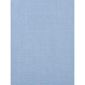 Striking Realistic | Chambray by Robert Allen