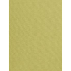 Exceptional Provost Lime Fabric