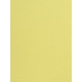 Outstanding Provost Celery Fabric