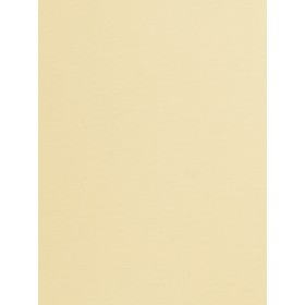 Alluring Provost Nude Fabric