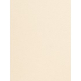 Glowing Provost Pearl Fabric
