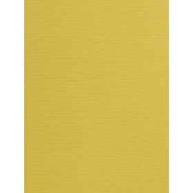 Extraordinary Provost Chartreuse Fabric