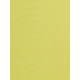 Special Provost Limeade Fabric