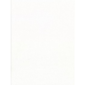 2910-92599 Foster Off-White 20.5-in Prepasted Liner Wallpaper