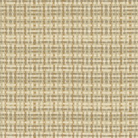 Checked Out 16 31531.16.0 Kravet Fabric