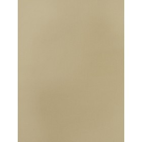 Dazzling Simply Canvas Flax Fabric
